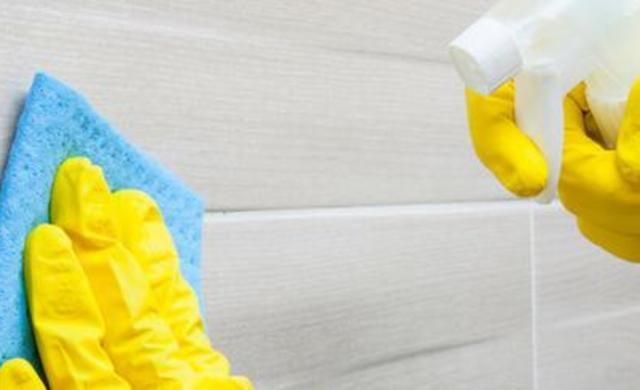 Reinigung,Schutz & Pflege