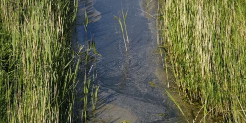Drainage & Entwässerung