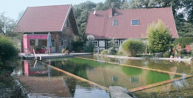 Schwimmteich anlegen, Themenwelten 960x490