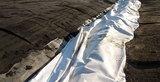 Bonar Vlies NW10 aus PP Kl. 2 weiß 2000 mm x 100 m/Ro.