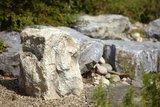Oase Dekorfels Abdeckung InScenio Rock